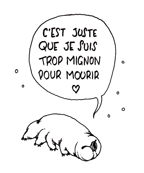 tardigrade_2