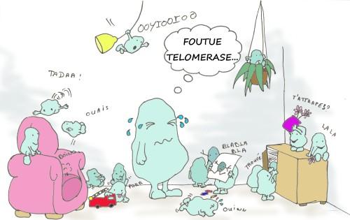 tel_cellule